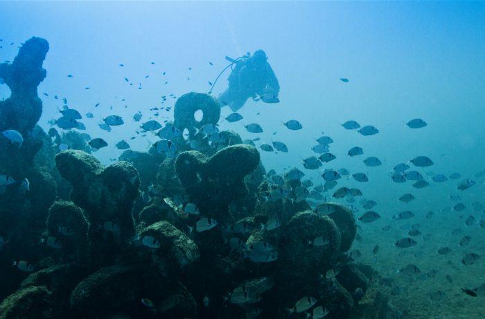 Atlantis 7